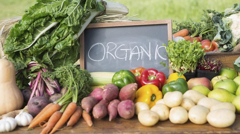 alimentazione-organica-produzione-vegetale-15-euroconsulting