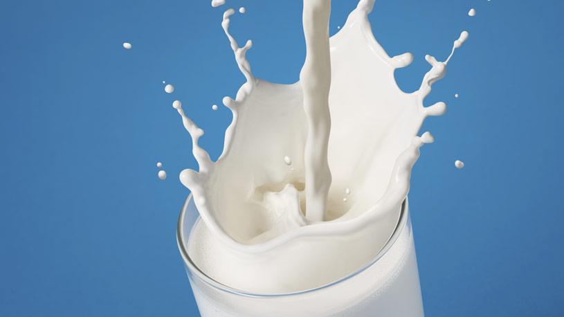 latte-derivati-02-euroconsuling