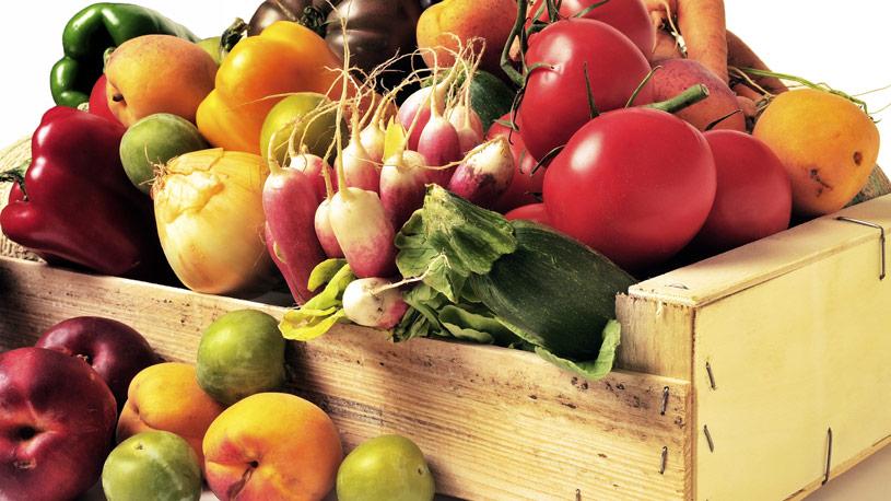ortaggi-produzione-vegetale-10-euroconsulting