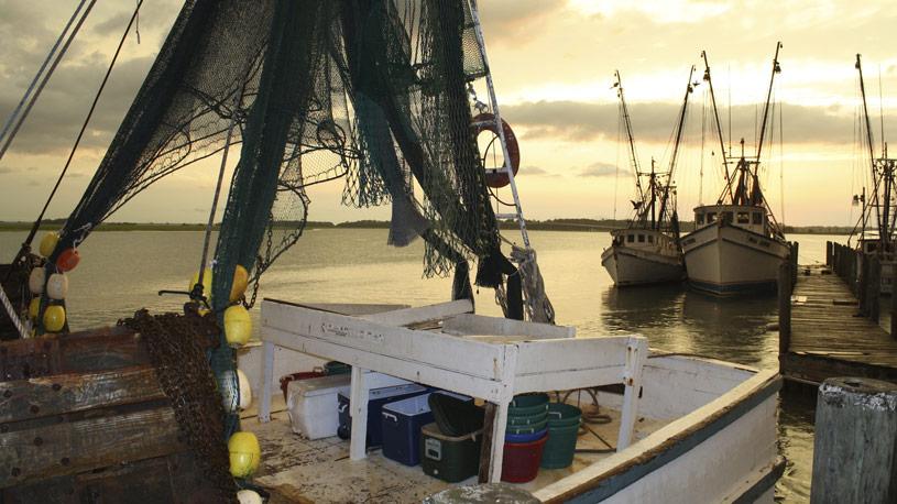 pesca03-euroconsulting