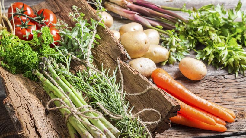 produzione-vegetale-08-euroconsulting