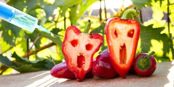 alimenti-geneticamente-modificati-per-dimagrire-italia